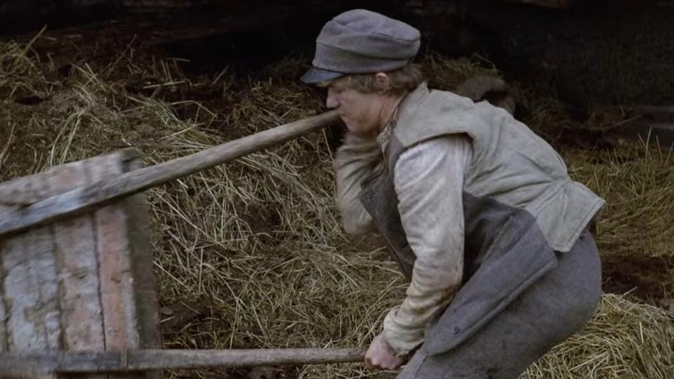 Udvandrerne (1971) og Nybyggerne (1972) er blevet vist i serieform på dansk tv. I dag er de tilgængelige på Netflix.