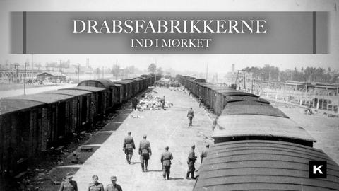 Nyankommen transport i Auschwitz-Birkenau i maj/juni 1944 ('The Aushcwitz Album')