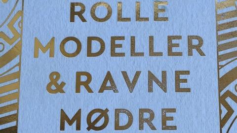 'Rollemodeller og Ravnemødre' af Sarah Steinitz udkom i marts på forlaget Lindhardt og Ringhof.